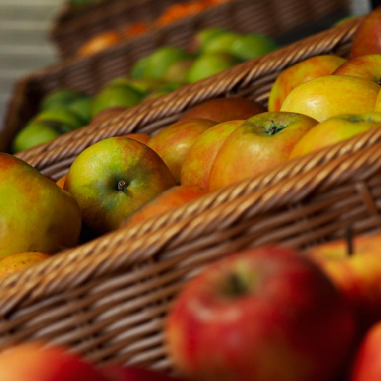 Äpfel vom Dingholzer Hofladen