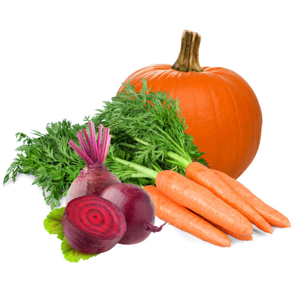 Gemüse aus eigenem Anbau aus dem Dingholzer Hofladen